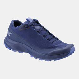 Arc'teryx Womens Aerios FL GTX Shoes Solstice/Lolite