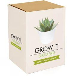 Grow It Succulent No Colour