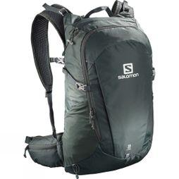 Salomon Trailblazer 30 Running Pack Urban Chic/Alloy