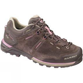 Womens Alnasca Low GTX