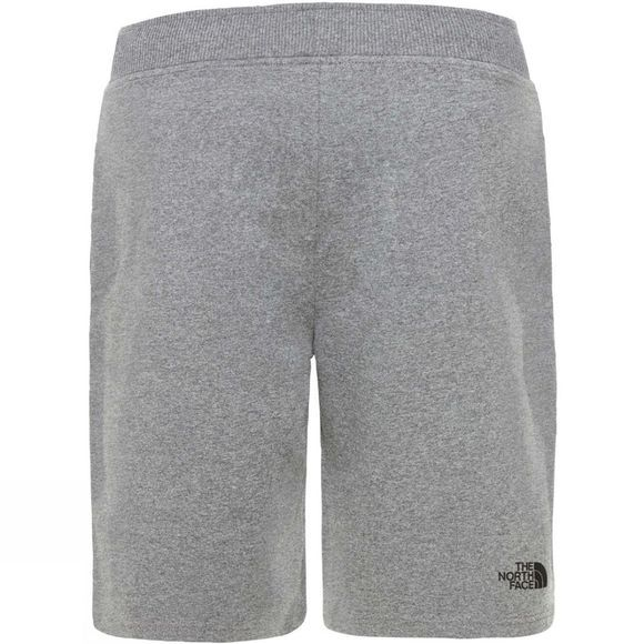 The North Face Mens Standard Short Light Shorts TNF Medium Grey Heather