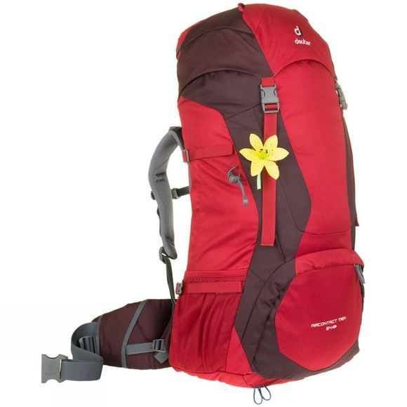 Deuter Air Contact Trek 64 SL Rucksack Cranberry-Aubergine