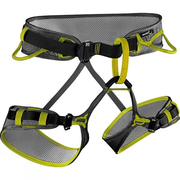 Edelrid Zack Adjustable Harness Slate / Oasis